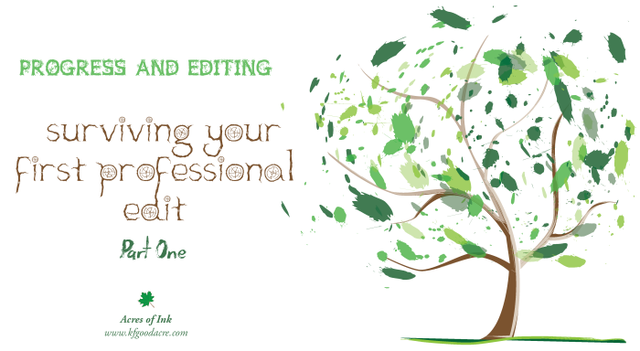 PE_Surviving your first professional edit part 1