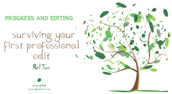 PE_Surviving your first professional edit part 2