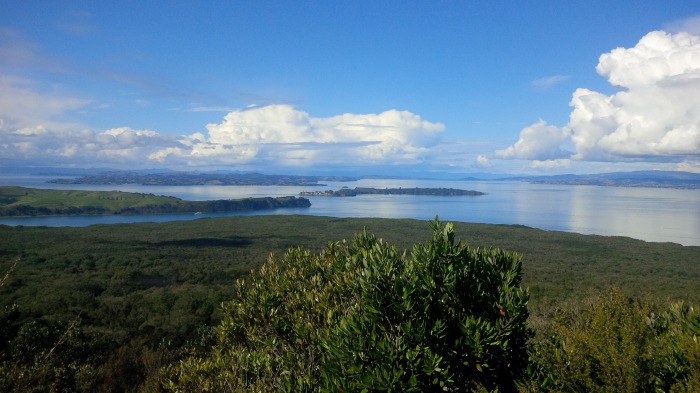 The view from the top of Rangitoto (volcano), North Island
